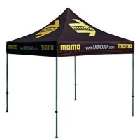Stainless Steel Pop-up Tent Canopy 10 x 10 WPSK4049