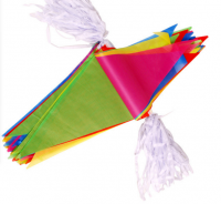 4 Color Process Pennant WPZL8056