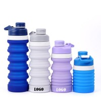 20 OZ Spring Silicone Water Bottle WPZL8119
