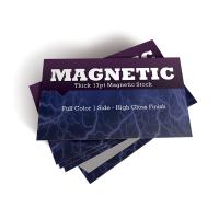 Business Card Magnet WPJL9027