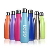 17oz Stainless Steel Water Bottle WPAL047